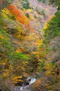 西沢渓谷、滝と紅葉の渓谷美