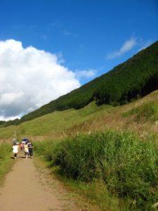 仙石原のすすき散策路を歩きがら眺める