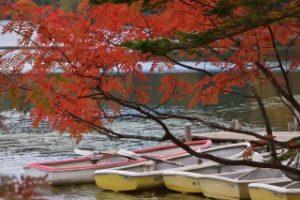 白駒池と真っ赤な紅葉