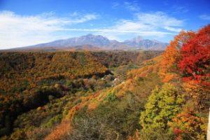 八ヶ岳高原の紅葉