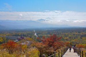 八ヶ岳高原・美し森の紅葉