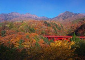 八ヶ岳高原・東沢大橋展望台からの紅葉