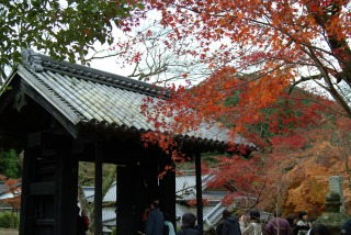 秋月城址、黒門と紅葉