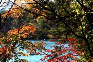 五色沼を彩る紅葉