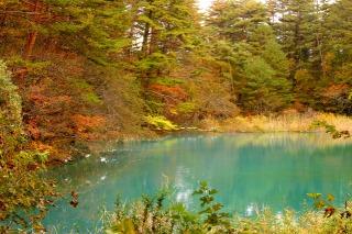 エメラルドグリーンの五色沼と紅葉