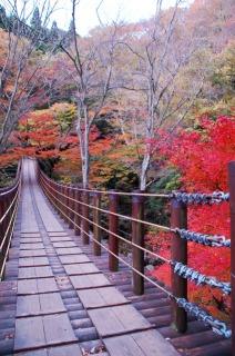 花貫渓谷に色づく紅葉