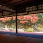 高台寺ライトアップ2017!紅葉の見頃期間を楽しむ方法?