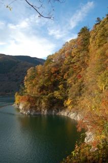 奥多摩湖岸に色づく紅葉