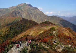 谷川岳天神峠展望台の紅葉