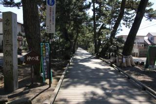 御穂神社の参道、羽衣の松から神社まで約500メートルの木道