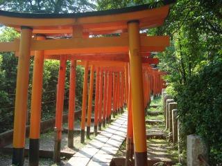根津神社の千本鳥居