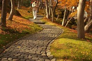 箱根美術館の苔庭と紅葉