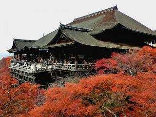 kiyomizu-koyo1
