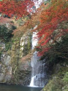 箕面公園の滝と紅葉
