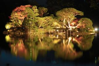 六義園紅葉のライトアップ