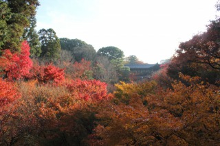 臥雲橋から見上げる渓谷の紅葉もす素晴らしい